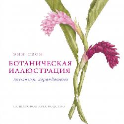 Ботаническая иллюстрация цветными карандашами